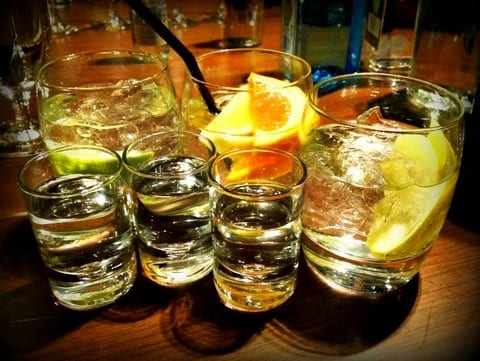 Gin and tonic tasting