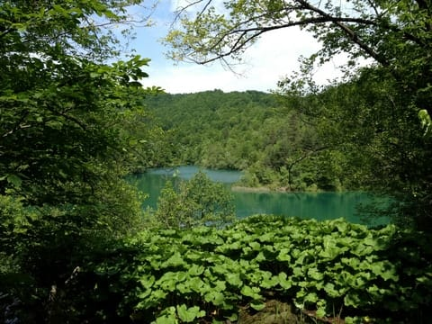 Hello, Plitivice