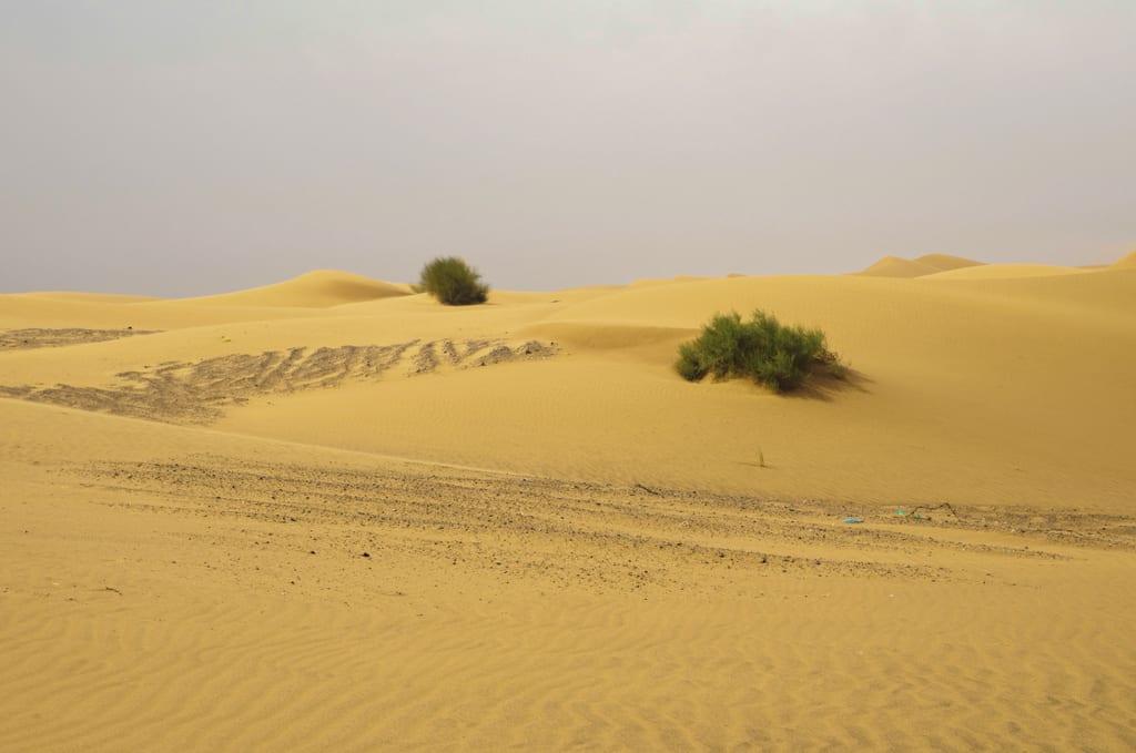 Dubai Sand Dunes