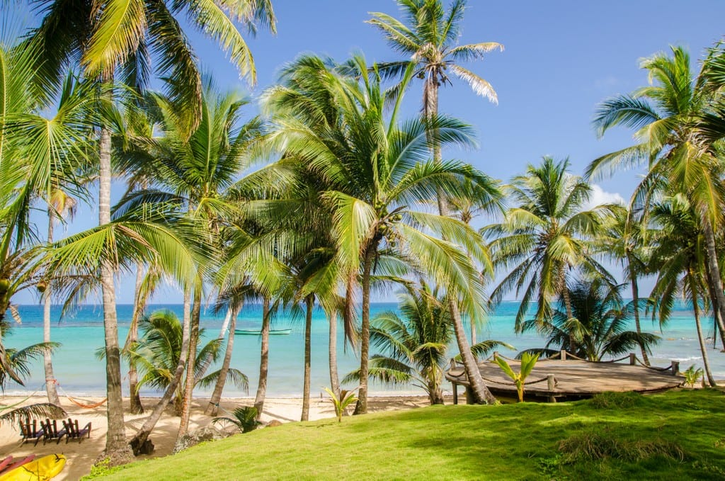 Palm trees in front of the Caribbean Sea in Little Corn Island