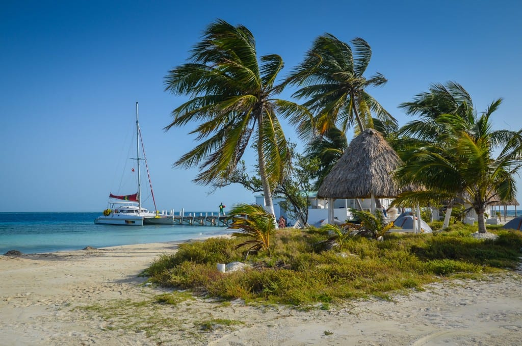 Palm trees on the beach in Belize with a sailboat in the background