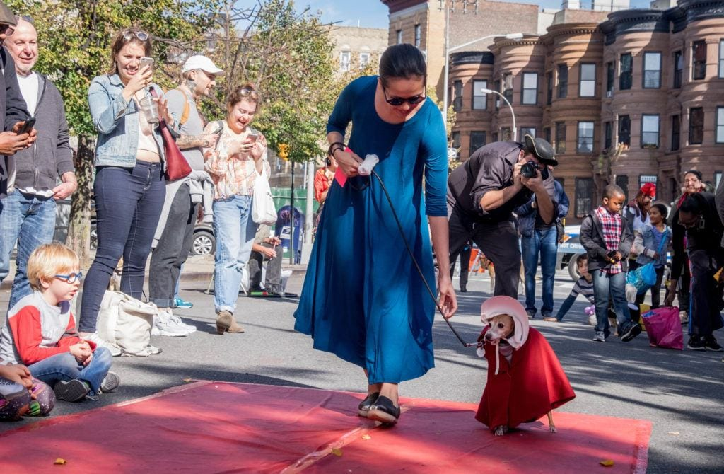 A woman in a blue dress walking a whippet dressed as a handmaid in a red cape and white bonnet at a Halloween Dog Parade.