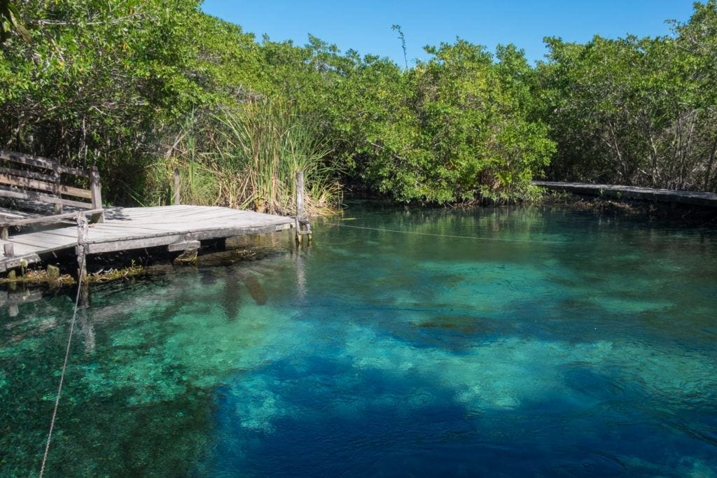 A bright teal-blue lake-like cenote surrounded by trees in Holbox.