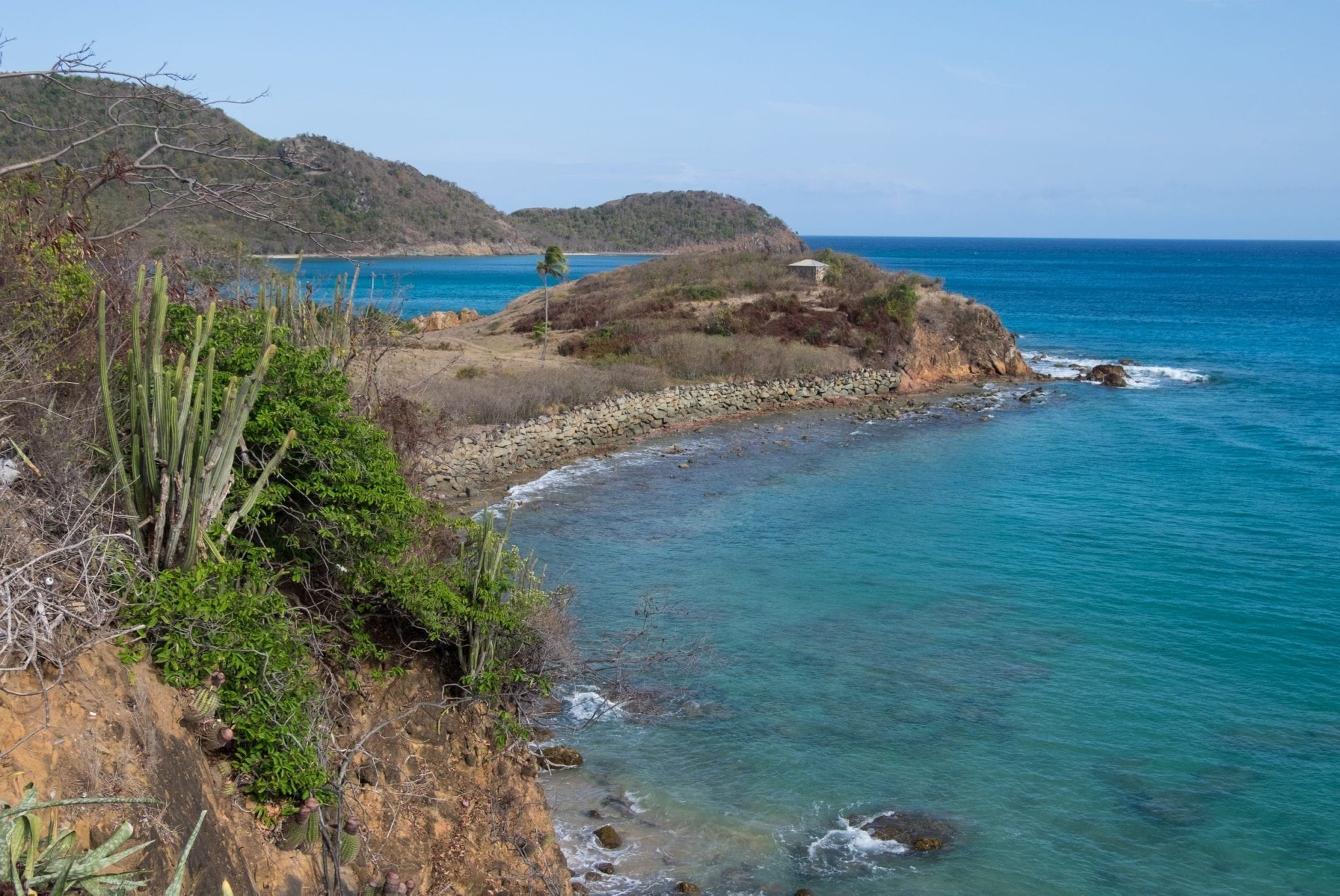 View from a cliff in Antigua: a peninsula rises out into the bright teal sea on the right, while a grove of cacti grows on the left.