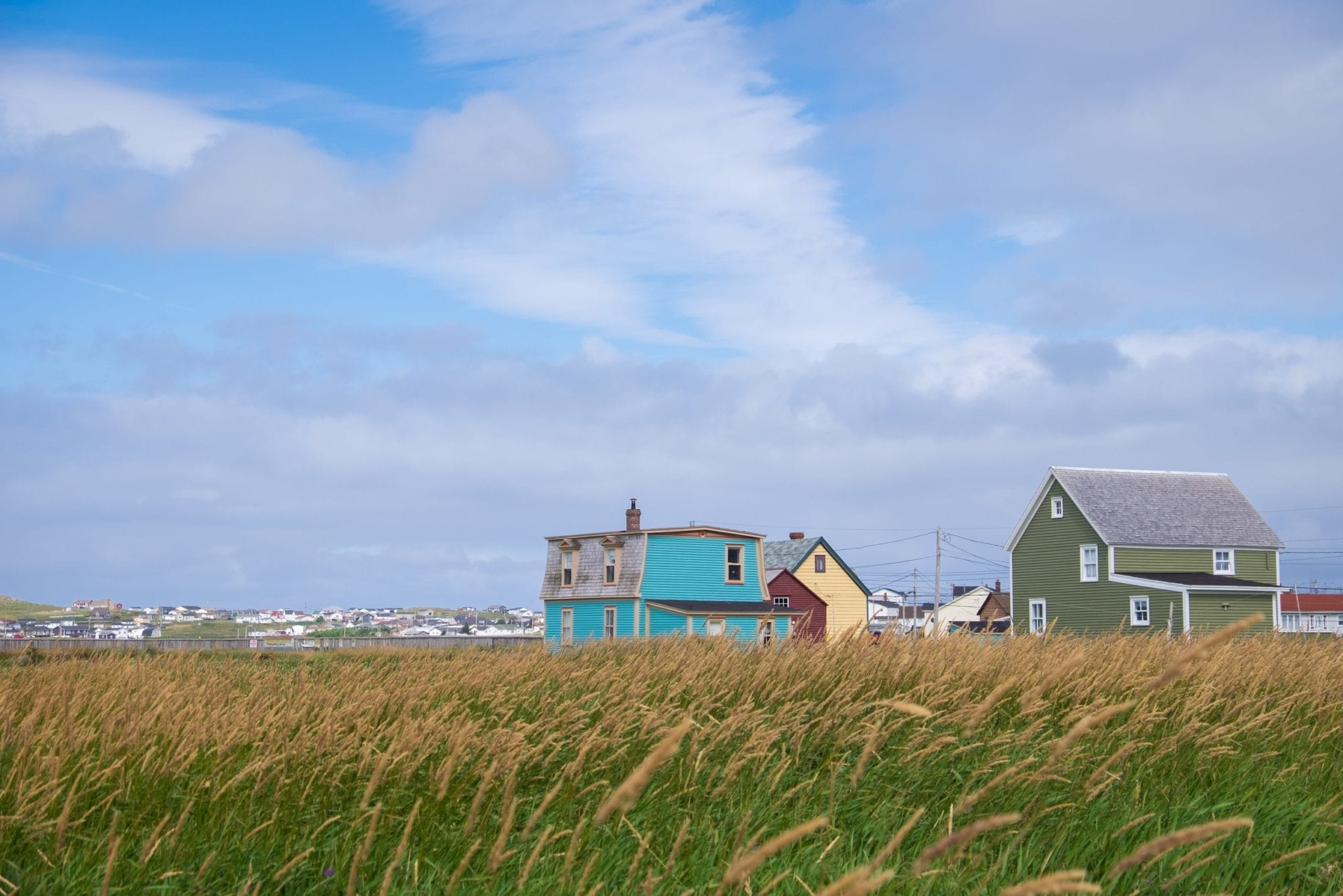 Two houses, one turquoise and one pea green, on a grassy landscape in Bonavista, Newfoundland.