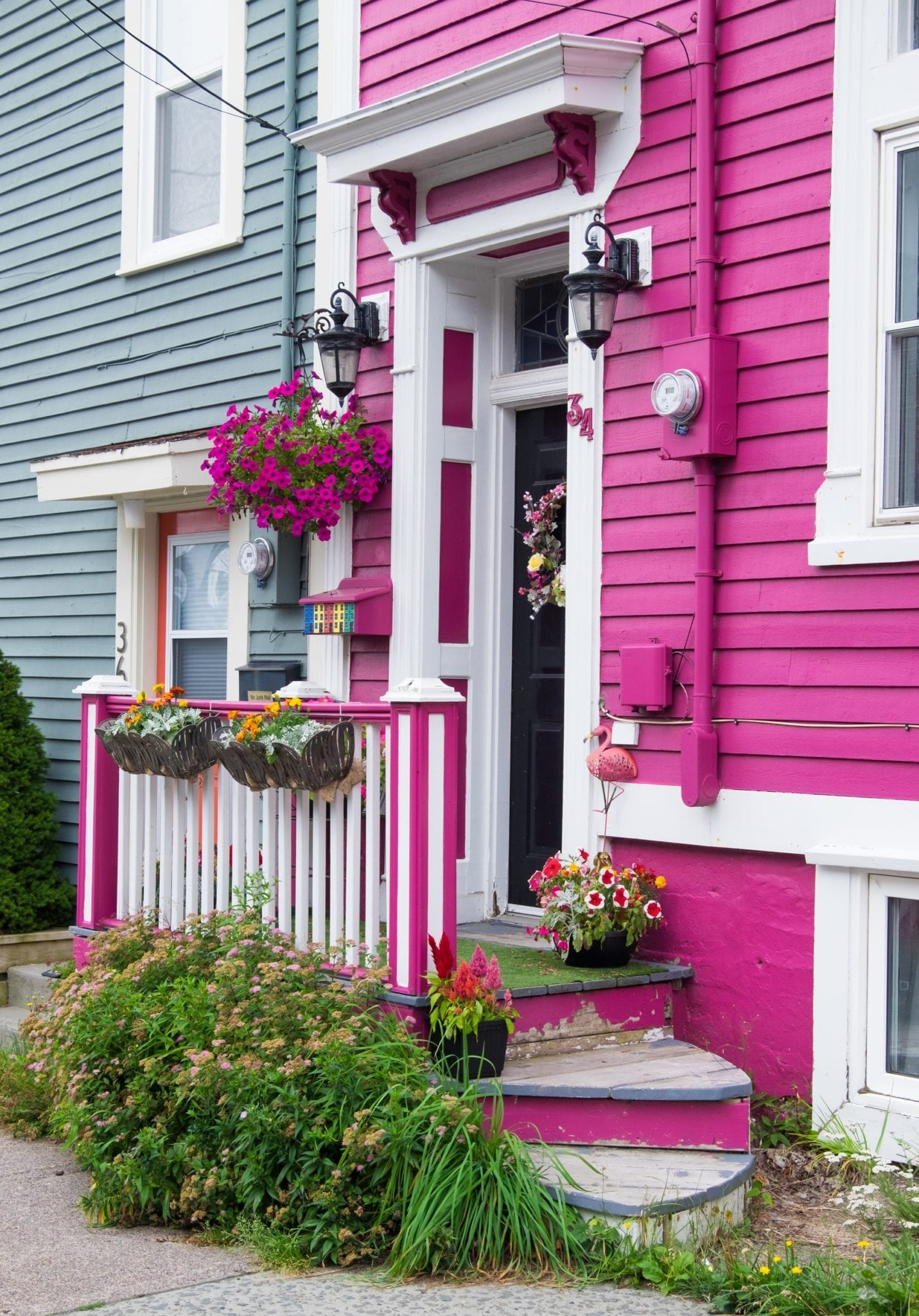 A bright pink house with a tiny porch and bushes and pink plants hanging, in St. John's, Newfoundland.