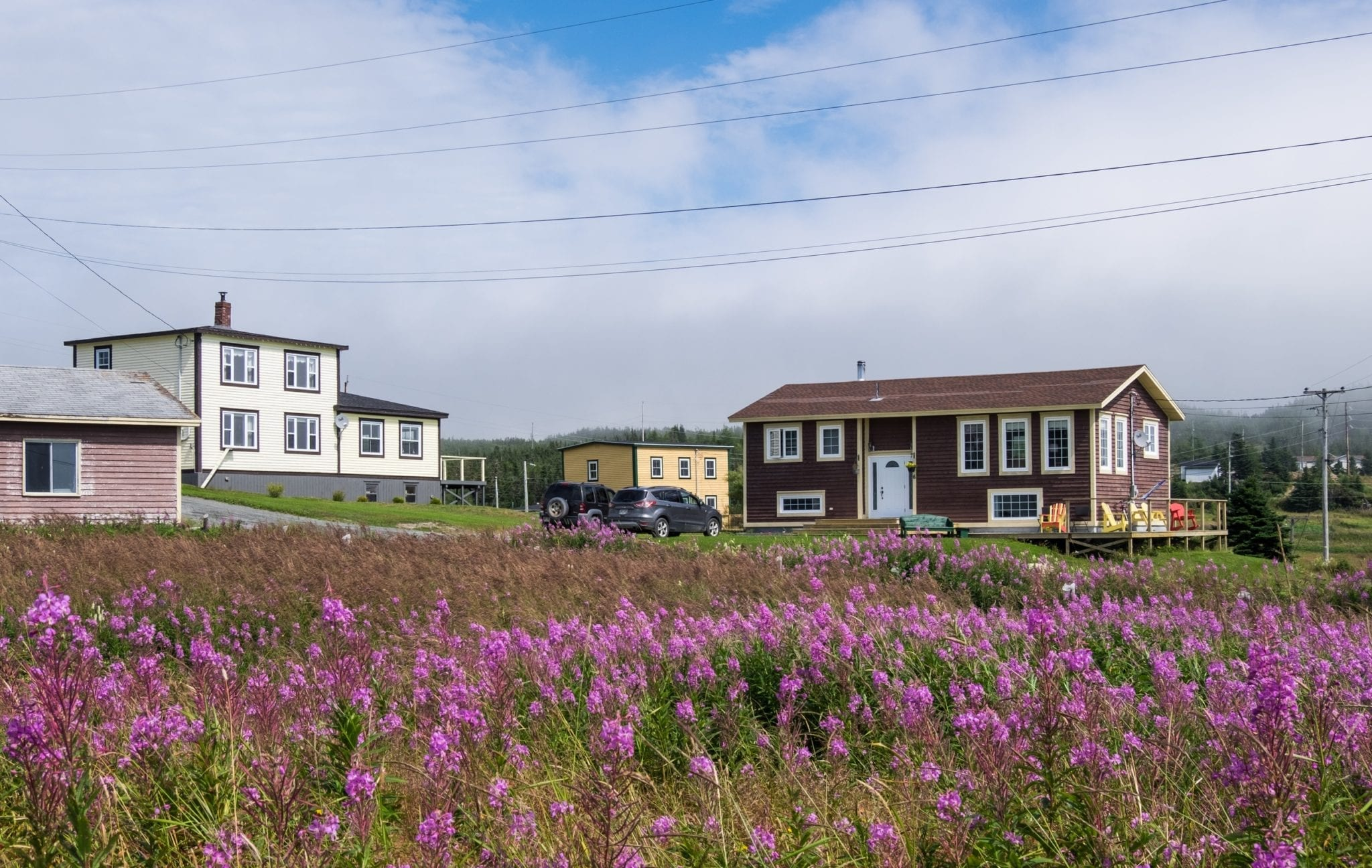 Cottages perched in front of a field of bright purple flowers underneath a cloudy blue and white sky.