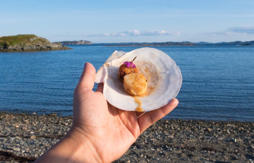 A hand holds up a scallop shell with a cooked scallop inside it, topped with a purple flower. In the background is the bright blue sea.