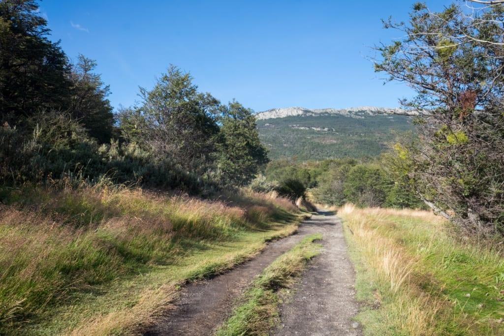 A path leading through Tierra del Fuego National Park.