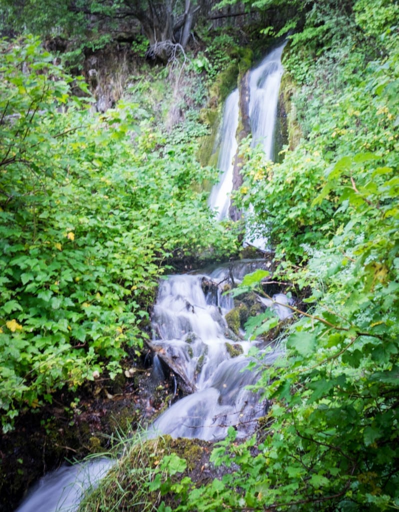 A waterfall surrounded by bright green vegetation.