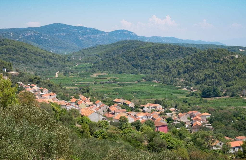 A mountainside country setting with orange-roofed houses built into a steep hill, and rows of vineyards in the valley.