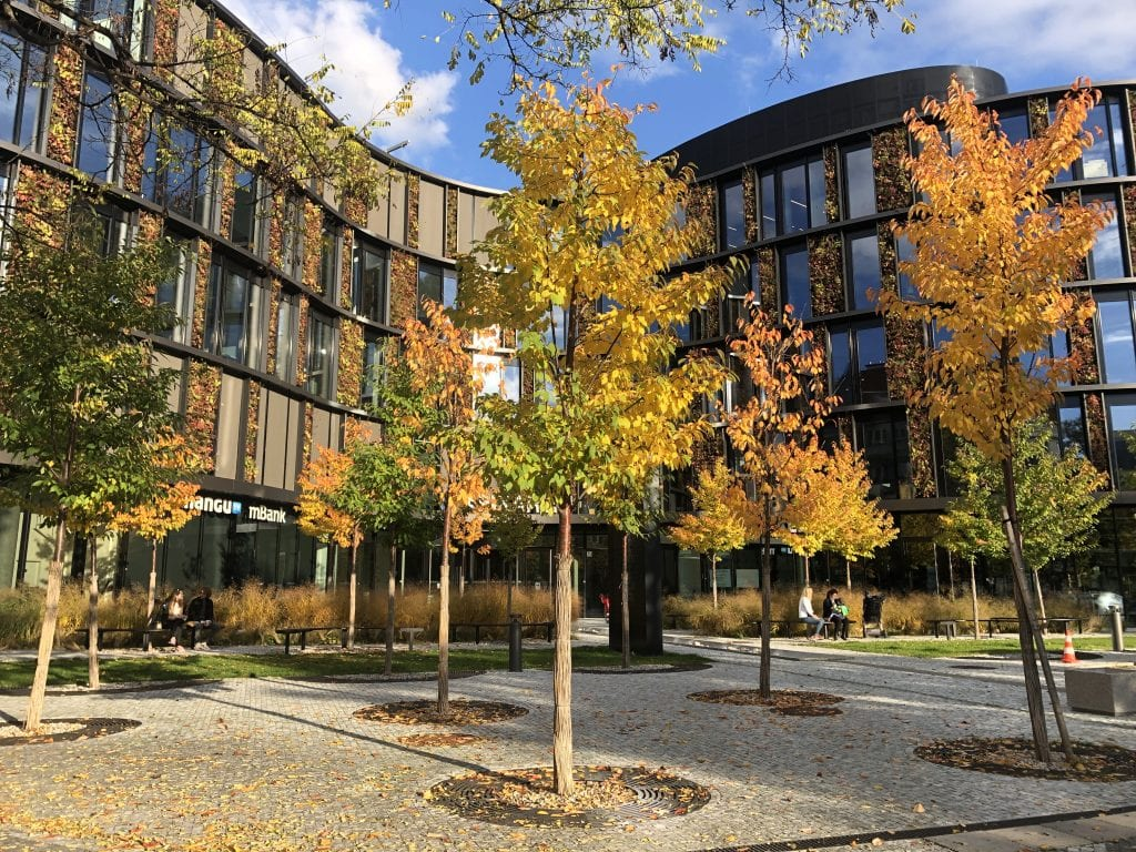 A wavy modern office building with panels of autumn leaves in between dark glass windows, yellow and orange trees in the foreground.